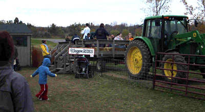 Fall family fun, hayrides, pumpkins and more at Gro Moore Farms, in Henrietta, NY