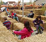 Fun and fall go together at Pumpkin Hollow at Gro Moore Farms in Henrietta, NY